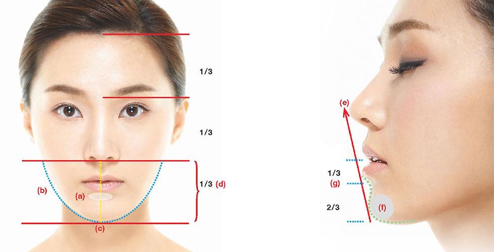 上、中、下段臉評估重點
