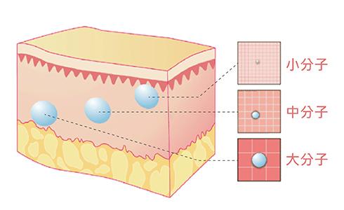 波尿酸針劑劑型有分大、中、小不同分子
