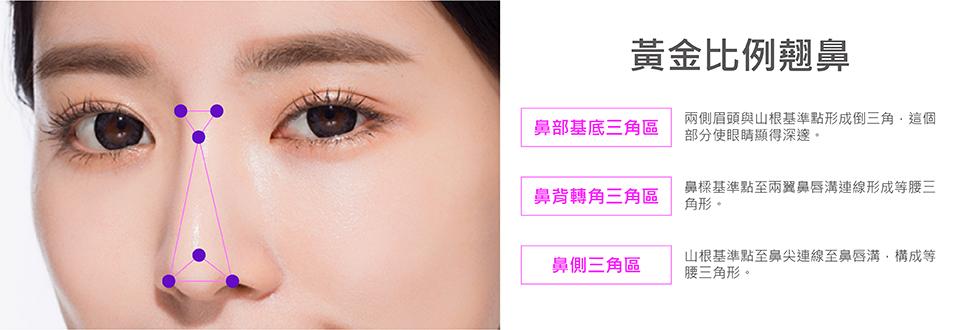 美人線/提美拉線性拉提可改變鼻部弧度,增加立體、深邃感。